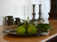 Web_pewter-plate-limes